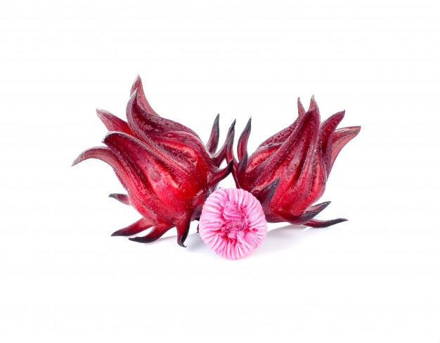 roselle hibiscus